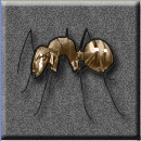 File:Absurd 128x128 giant ant.png